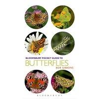 【预订】Pocket Guide to Butterflies