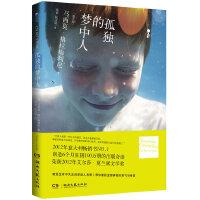 孤独的梦中人(2012年意大利畅销书NO.1,创造6个月狂销100万册的出版奇迹,荣获2012年艾尔莎.莫兰黛文学奖)