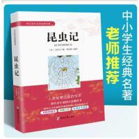 现货 seo实战密码 昝辉 zac 著 网站推广百度谷歌360首页搜索引擎排名标题seo优化攻略教程书籍60天网站流量