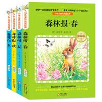 森林报 春夏秋冬彩绘版(套装4册)快乐读书吧 三四年级推荐阅读