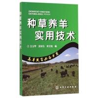 种草养羊实用技术