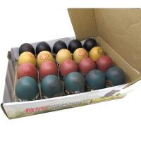 恐龙奇趣蛋 恐龙蛋玩具蛋奇趣蛋拼装奥特曼蛋扭蛋积木孵化蛋爆兽变形蛋恐龙蛋