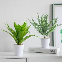 创意北欧仿真植物小盆栽假花盆景家居客厅卧室内绿植桌面装饰摆件