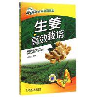 生姜高效栽培(双色印刷)/高效种植致富直通车