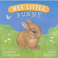【预订】Wee Little Bunny 9781416979371