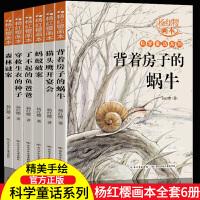 杨红樱画本系列全套6册 背着房子的蜗牛森林谜案少儿科普童话故事书绘本 儿童6-9-12岁小学生课外书籍三四五六年级儿童