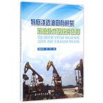 特低渗透油田有杆泵采油技术及软件应用