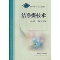 【正版二手书9成新左右】洁净煤技术 周安宁,黄定国 中国矿业大学出版社