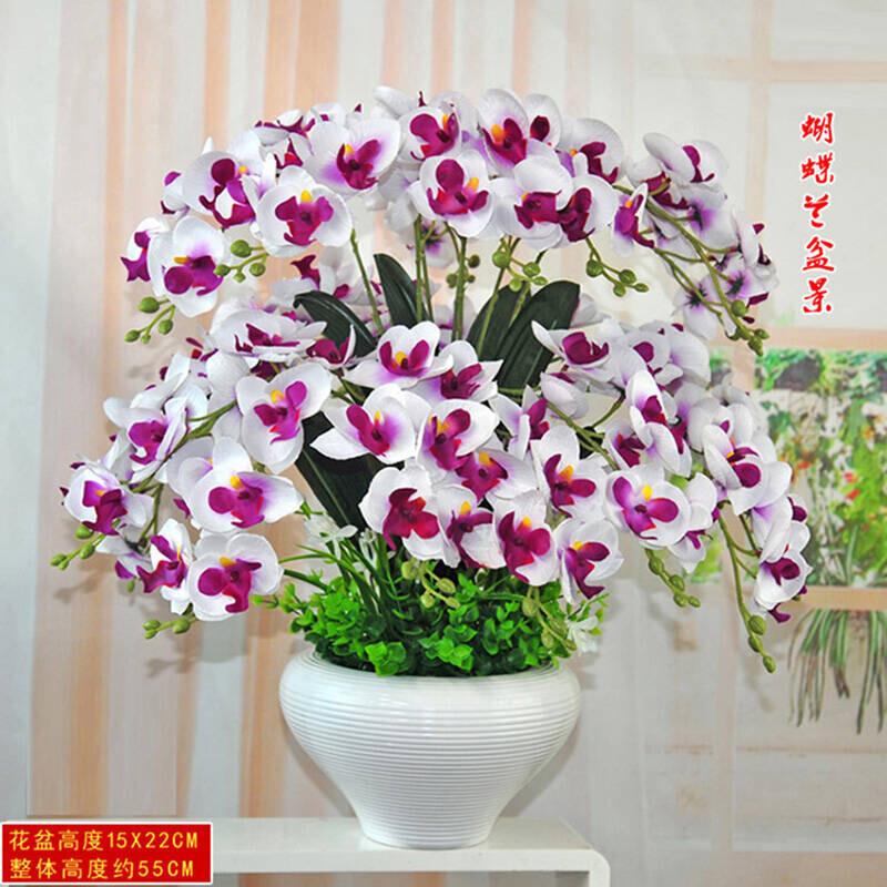 仿真花盆栽盆景装饰工艺品手感蝴蝶兰假花绢花客厅茶几花瓶摆放花艺