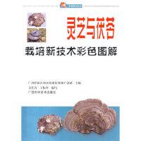 当天发货正版 灵芝与茯苓栽培新技术彩色图解 韦仕岩,王灿琴写 广西科学技术出版社 9787806669693文轩图书