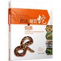 图说观赏蛇的饲养 陈志兵 张斌 曹春英 陈军 上海科学技术出版社 9787547807958