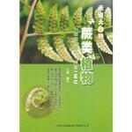 蕨类植物(走进大自然) 王艳写 吉林出版集团有限责任公司 9787553416045