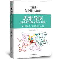 思维导图 :高效开发孩子的左右脑 孙易新儿童思维导图训练书籍 小学生初中生课外阅读书 思维导图