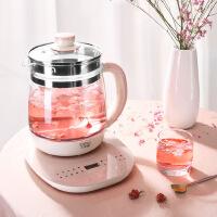 小浣熊玻璃养生壶家用多功能全自动办公室小型迷你养身花茶煮茶器