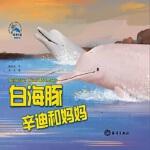 白海豚辛迪和妈妈 糖朵朵 海洋出版社 9787521001266 新华书店 正版保障