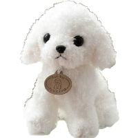 会说话的狗狗 能录音会说话的泰迪狗毛绒玩具狗狗公仔仿真小狗玩偶儿童生日礼物 白色 坐高25厘米左右