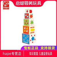 Hape知识套盒 儿童益智玩具1-2岁宝宝智力早教积木大块木制男女孩