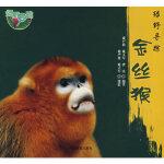 绿野寻踪―*,雍严格,雍立军,曹庆著,中国林业出版社,9787503851322