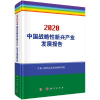 2020中国战略性新兴产业发展报告