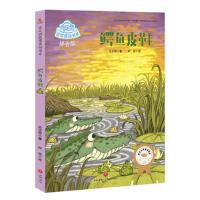鳄鱼皮鞋,肖定丽,天地出版社,9787545531527