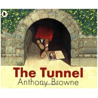 The Tunnel 英文原版 安东尼布朗绘本:隧道 儿童绘本
