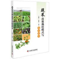 蔬菜高效栽培模式与配套技术