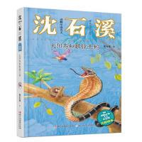 动物小说大王沈石溪・注音读本:太阳鸟和眼镜王蛇00