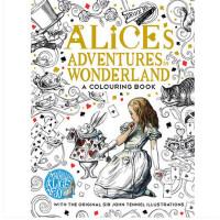 [现货] 英文原版Alice's 爱丽丝梦游仙境 秘密花园系列 涂鸦填色书