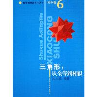 三角形:从全等到相似/数学奥林匹克小丛书(初中卷6) 华东师范大学出版社 9787561740743