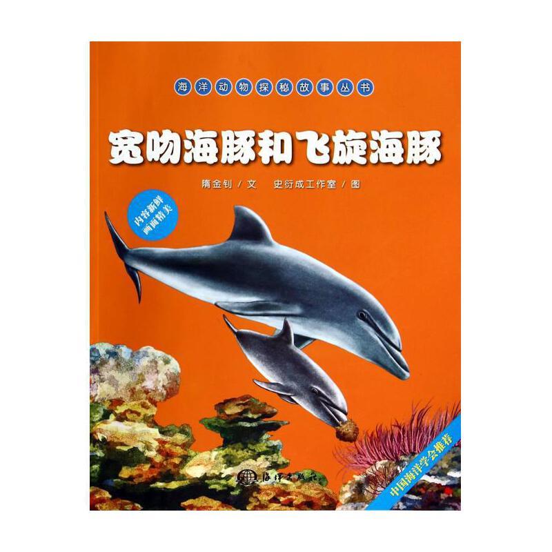 手绘邀请卡边框 海豚