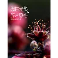 【95成新正版二手书旧书】#N/A 张彤