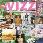[现货]Vizz: Outrageous Visual Communication