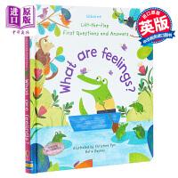 【中商原版】Lift-the-Flap First Questions and Answers What are Fee