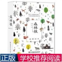 森林报 (苏)维・比安基 著 著 韦苇 译 益智游戏少儿 新华正版图书籍 湖南少年儿童出版社