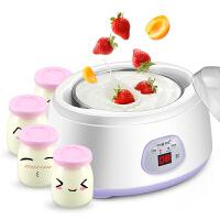 Y-SA10分杯酸奶机 家用全自动纳豆机 米酒机 不锈钢胆