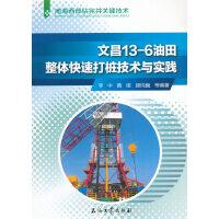 文昌13-6油田整体快速打桩技术与实践