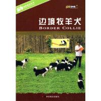 边境牧羊犬 陈晨,宛钺著 科学普及出版社 9787110069813