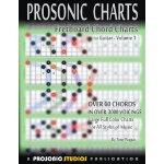 【预订】Fretboard Chord Charts for Guitar - Volume 197809