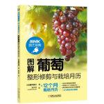 图解葡萄整形修剪与栽培月历