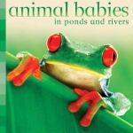 【预订】Animal Babies in Ponds and Rivers