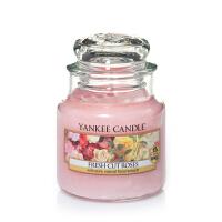 Candle 扬基蜡烛 美国进口天然植物香氛无烟香薰蜡烛 室内摆件装饰小瓶
