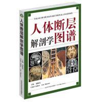 人体断层解剖学图谱(精)人体解剖学断面解剖学图谱 刘树伟主编 山东科学技术出版社