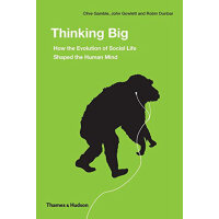 Thinking Big: How the Evolution of Social Life Shaped the H