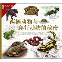 【旧书二手书9成新】两栖动物与爬行动物的秘密/野外探秘手册 [西] 玛利亚・安赫斯・胡利维特,加布里埃尔・马丁・罗 9