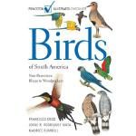 【预订】Birds of South America: Non-Passerines: Rheas to Woodpe