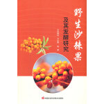 野生沙棘果及其发酵研究