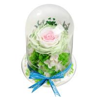 永生花玫瑰玻璃罩礼盒摆件母节生日礼物礼品送情人父母老婆