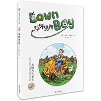 美国当代金质童书 草坪男孩