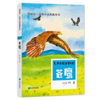 草原动物系列――苍鹰