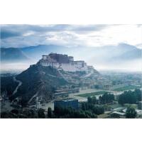 成人1000片木质拼图500片西藏风景世界著名 布达拉宫